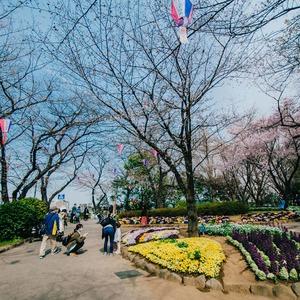 プラウド王子本町の近くの公園・緑地