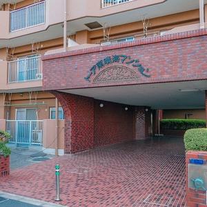 トーア南晴海マンションのマンションの入口・エントランス