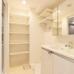 豊島ハイツ(6階,4099万円)の化粧室・脱衣所・洗面室