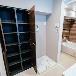 イトーピア六本木(5階,6780万円)の化粧室・脱衣所・洗面室