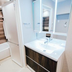 イトーピア六本木(5階,)の化粧室・脱衣所・洗面室