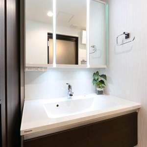 エンゼルハイム桜台(3階,4180万円)の化粧室・脱衣所・洗面室