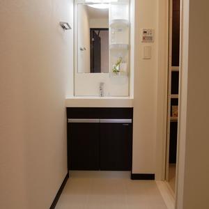 ミルーナヒルズ錦糸町(6階,4599万円)の化粧室・脱衣所・洗面室