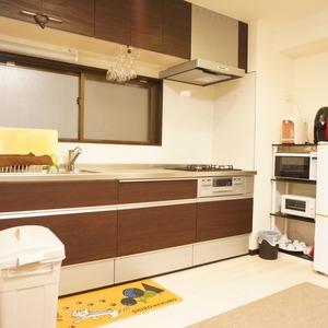 湯島イガラシマンション(4階,2980万円)のキッチン