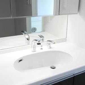 ザパームス竹ノ塚(13階,)の化粧室・脱衣所・洗面室