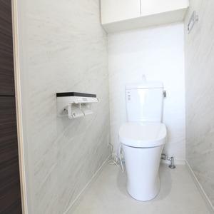 ザパームス竹ノ塚(13階,)のトイレ