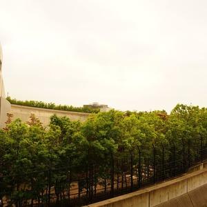 プリズムタワー(6階,6500万円)のお部屋からの眺望