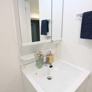 メイツ新宿なつめ坂(2階,4380万円)の化粧室・脱衣所・洗面室