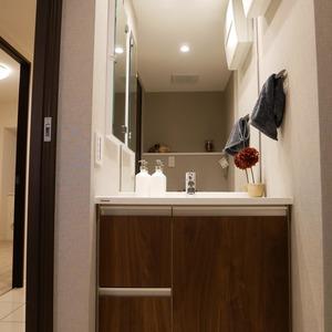 ライオンズマンション中野桃園(1階,5187万円)の化粧室・脱衣所・洗面室