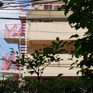 ライオンズマンション中野桃園(1階,5187万円)のお部屋からの眺望