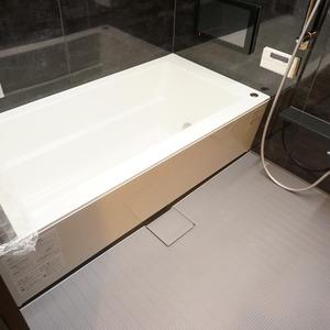 麹町ハウス(3階,)の浴室・お風呂