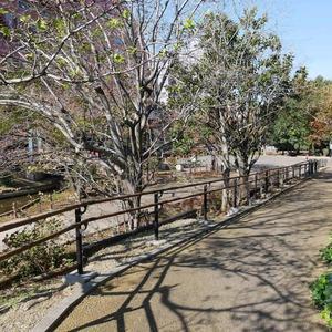 グローリオ錦糸町の近くの公園・緑地