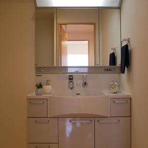 クレイシア両国(7階,)の化粧室・脱衣所・洗面室
