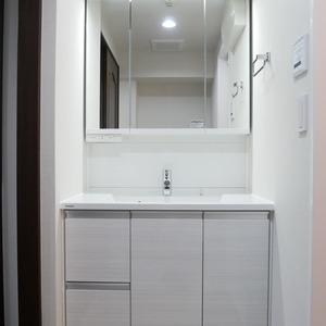 ライオンズシティ両国(11階,4250万円)の化粧室・脱衣所・洗面室