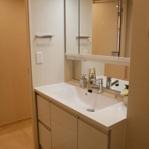 コスモ両国グランシティ(2階,4580万円)の化粧室・脱衣所・洗面室