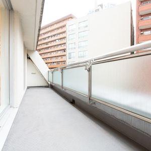 シェモワ新宿(5階,4599万円)のバルコニー