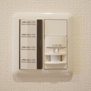 秀和亀戸天神橋レジデンス(9階,3690万円)のお部屋の玄関