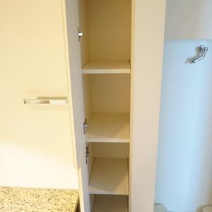 パークホームズ目黒ザレジデンス(4階,1億1200万円)の化粧室・脱衣所・洗面室