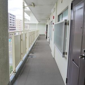 グレイス吾妻(6階,3799万円)のフロア廊下(エレベーター降りてからお部屋まで)