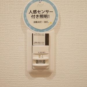 グレイス吾妻(6階,3799万円)のお部屋の玄関