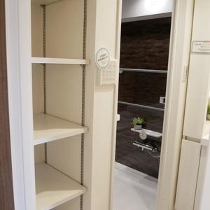 グレイス吾妻(6階,3799万円)の化粧室・脱衣所・洗面室