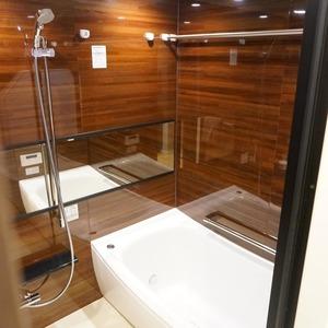 ファミールグラン白金ヴェルデフォーレ(8階,)の浴室・お風呂
