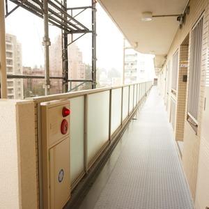 アベニュー音羽(7階,)のフロア廊下(エレベーター降りてからお部屋まで)