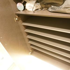 アベニュー音羽(7階,)のお部屋の玄関