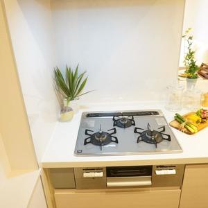 アベニュー音羽(7階,)のキッチン