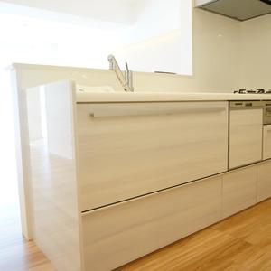 マンション小石川台(5階,)のキッチン