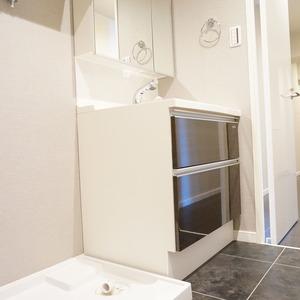 マンション小石川台(6階,)の化粧室・脱衣所・洗面室