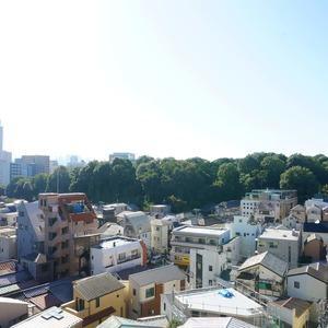 マンション小石川台(6階,)のお部屋からの眺望