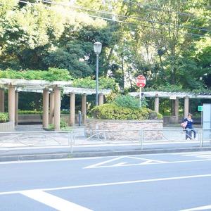 マンション小石川台の近くの公園・緑地
