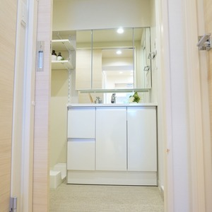 ライオンズマンション小石川植物園(7階,)の化粧室・脱衣所・洗面室
