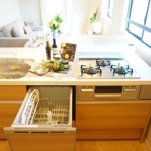 ライオンズマンション小石川植物園(7階,)のキッチン