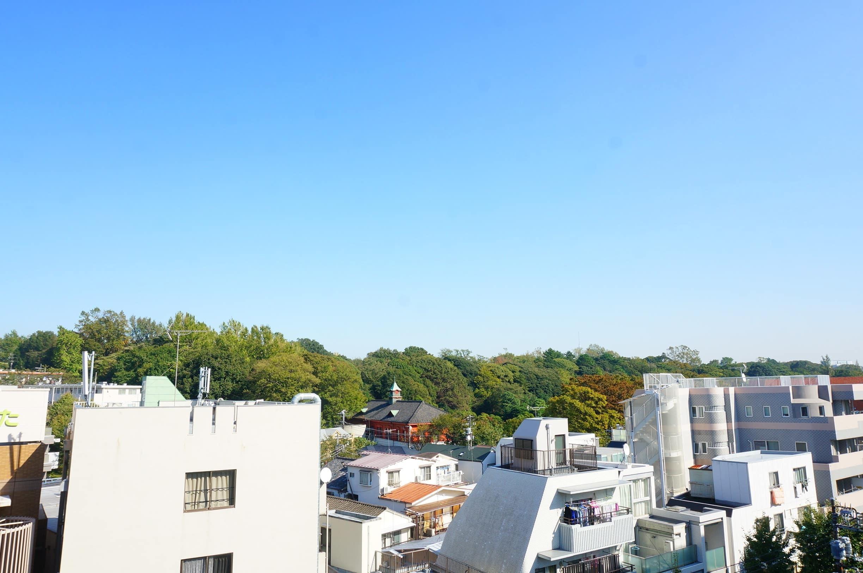 ライオンズマンション小石川植物園(7階,)1枚目