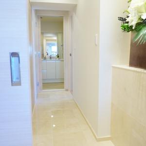 ライオンズマンション小石川植物園(7階,)のお部屋の廊下
