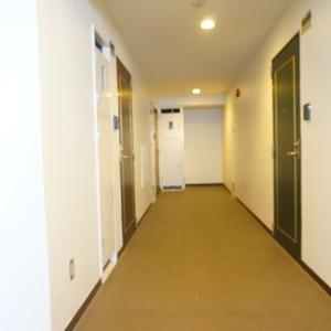 マージュ市谷柳町(9階,)のフロア廊下(エレベーター降りてからお部屋まで)