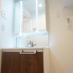 市谷加賀町スカイマンション(3階,)の化粧室・脱衣所・洗面室