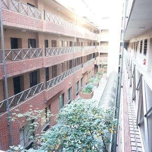ビオライフハウス(3階,)のフロア廊下(エレベーター降りてからお部屋まで)