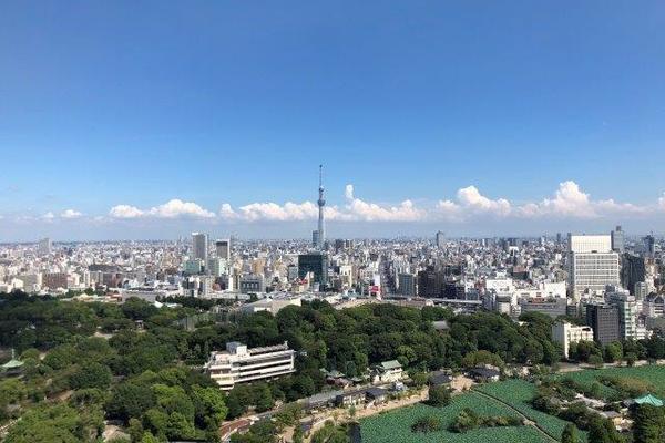ルネッサンスタワー上野池之端1億2800万円