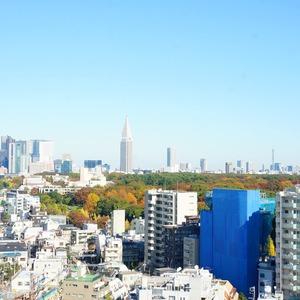 ブリリアタワー代々木公園クラッシィ(14階,)のお部屋からの眺望