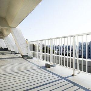 目黒ロイヤルハイツ(7階,8980万円)のルーフバルコニー