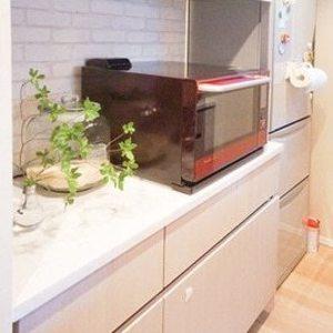 グリーンパーク日本橋堀留町(5階,)のキッチン