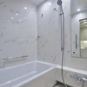 パークコート乃木坂ザ タワー(9階,1億1980万円)の浴室・お風呂