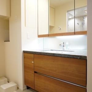 ブリリアタワー代々木公園クラッシィ(14階,)の化粧室・脱衣所・洗面室