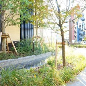ブリリアタワー代々木公園クラッシィの外観