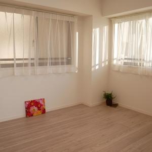 ナイスアーバン浅草(9階,4699万円)の洋室