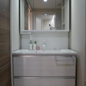 ナイスアーバン浅草(9階,4699万円)の化粧室・脱衣所・洗面室