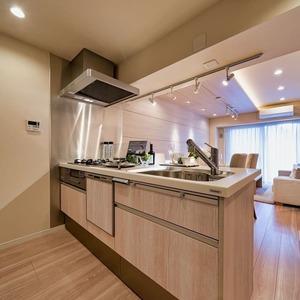 ニューハイツ新神楽坂(2階,6480万円)のキッチン